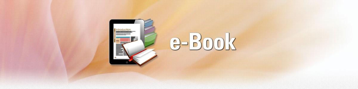 e-Book Work